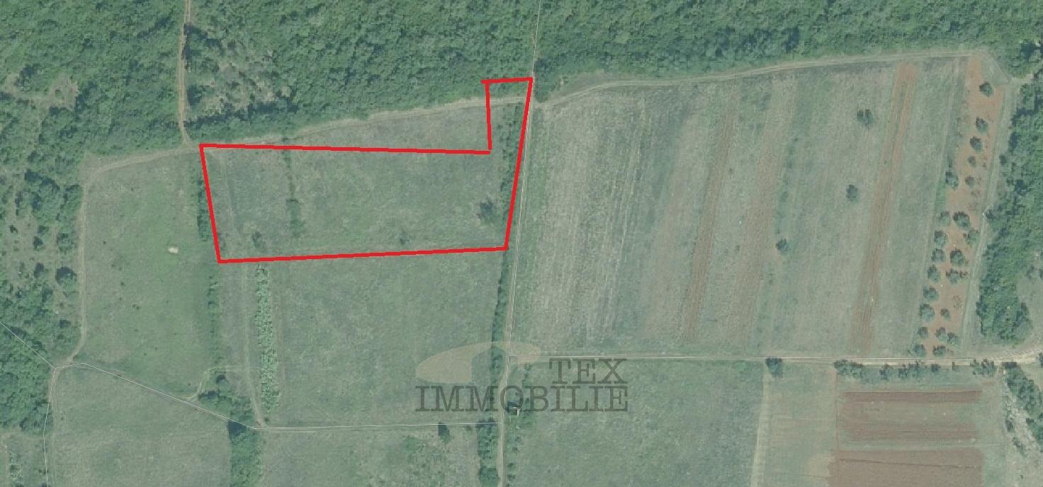 Poljoprivredno zemljište u Poreču