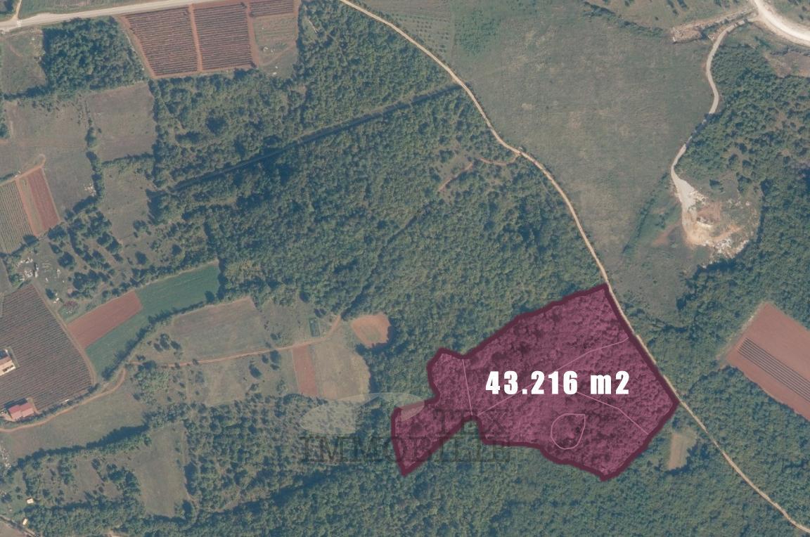 Poljoprivredno zemljište i šuma, 43216 m2