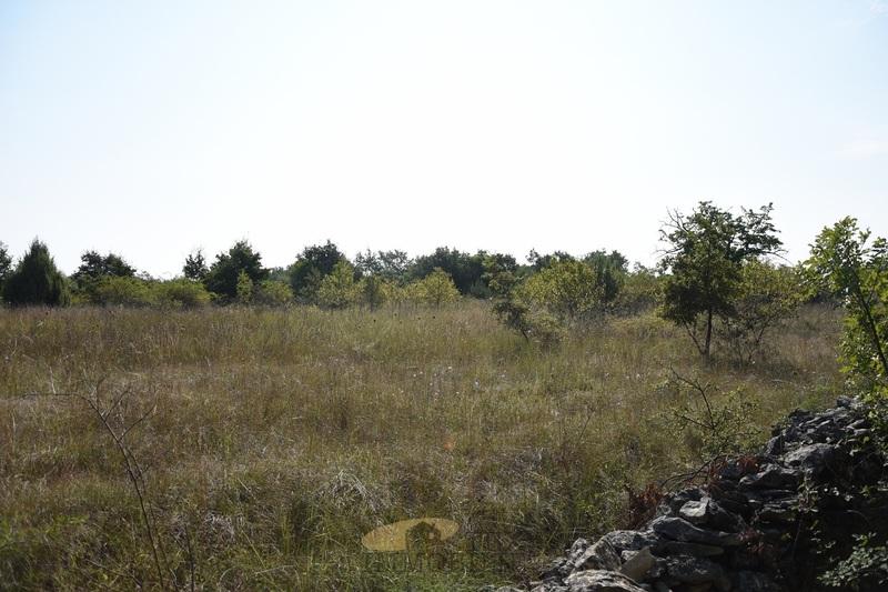 Veliko zemljište od 11.178 m2 sa građevinskom dozvolom