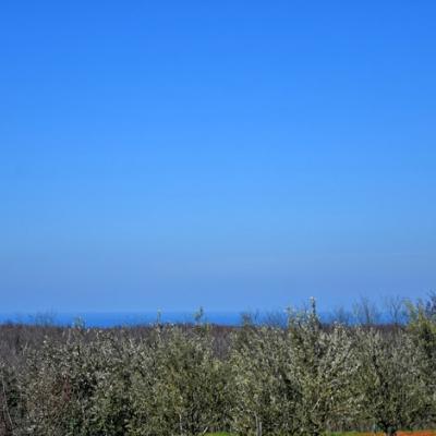 Terreno Poreč, 2.600m2