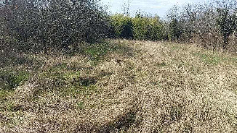 Grundstück Labin, 1.000m2