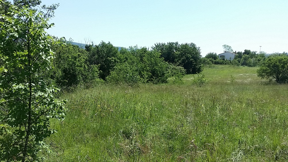Grundstück Nedešćina, Sveta Nedelja, 600m2