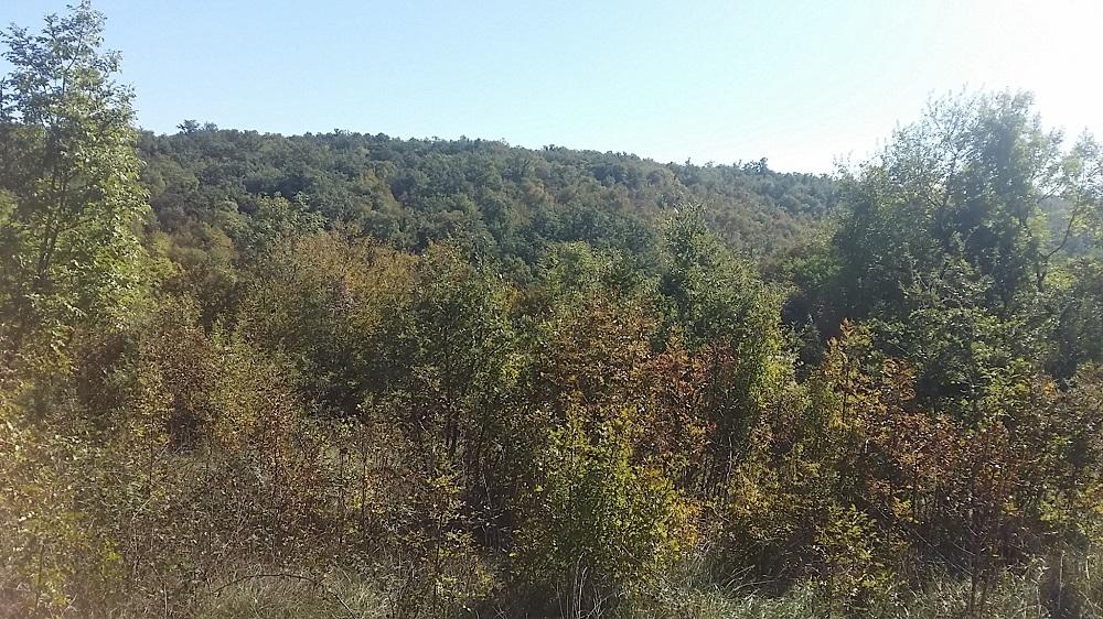Građevinsko zemljište, prodaja, 5 km od mora 15 eur-m2