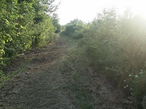 Nekretnine u Istri, Labin okolica, građevinsko i u nastavku poljoprivredno