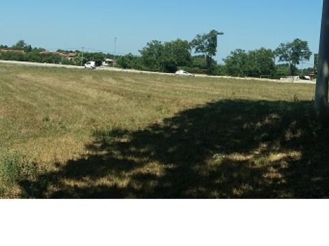 Nekretnine u Istri, Žminj okolica, građevinsko zemljište na ravnoj livadi